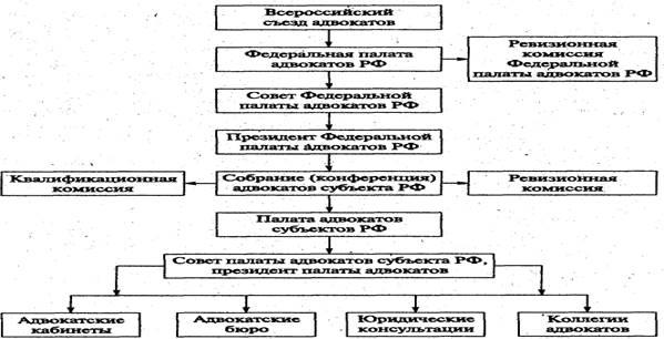 Структура и полномочия федеральной палаты адвокатов рф